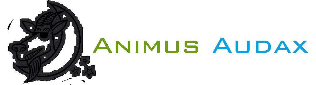 Animus Audax Studija